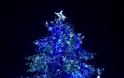 Štědrý den ve Zlíně: Pomočený vánoční strom, havárie vody i nálezy hasicích přístrojů