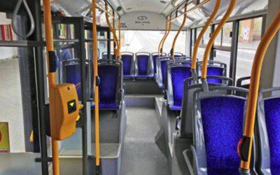 Podnapilý muž zapomněl psa v trolejbusu. Jiný cestující ho předal strážníkům