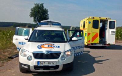 Hlídka MP Zlín pomáhala řidičce a její dceři, které v autě pokousal žlutočerný pavouk